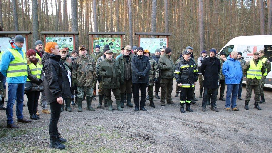 Walka z wirusem afrykańskiego pomoru świń (ASF) u dzików w Powiecie Opoczyńskim