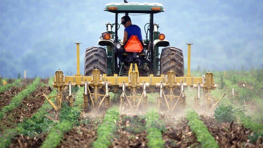 Jeszcze ponad dwa tygodnie mają rolnicy na złożenie wniosków o przyznanie płatności bezpośrednich i obszarowych z PROW za rok 2020. Mimo utrudnień związanych z epidemią, tegoroczna kampania przebiega sprawnie.