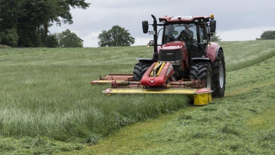 Wyjątkowe tymczasowe wsparcie dla rolników, mikroprzedsiębiorstw oraz małych i średnich przedsiębiorstw szczególnie dotkniętych kryzysem związanym z COVID-19.