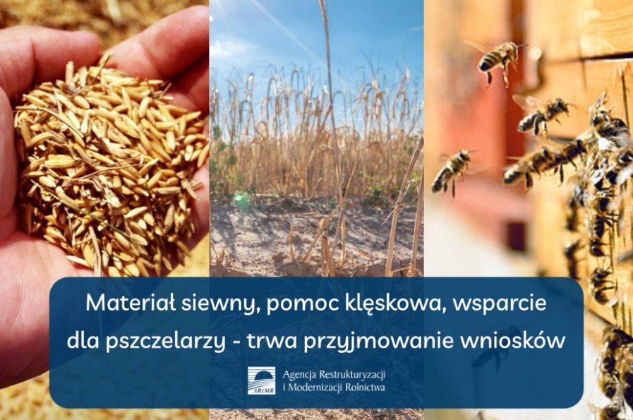 Materiał   siewny,   pomoc   klęskowa,   wsparcie   dla   pszczelarzy   –   trwa   przyjmowanie wniosków